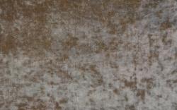 Truffle-21811SENS1181