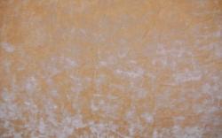 Vanilla-25066SENS1179