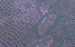 Purple-F6321345