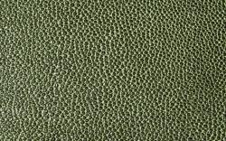 Green-Black-F5076041