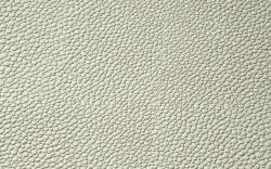 Ivory-F5076035